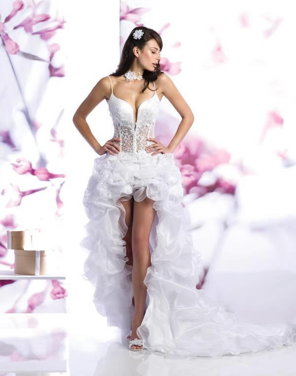 Amazing Short Wedding Dresses (17)