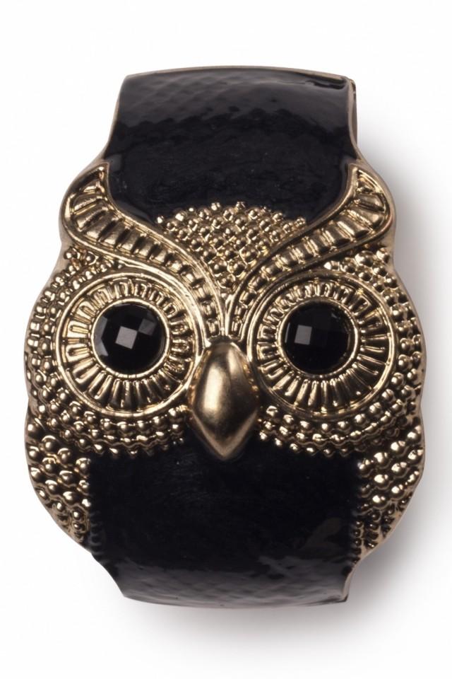 Beautiful Owl Braceletes (5)