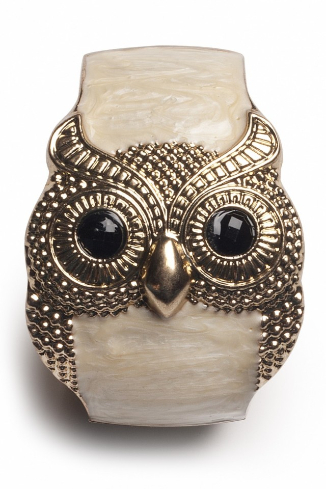 Beautiful Owl Braceletes (6)