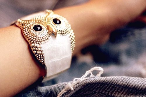 Beautiful Owl Braceletes (8)