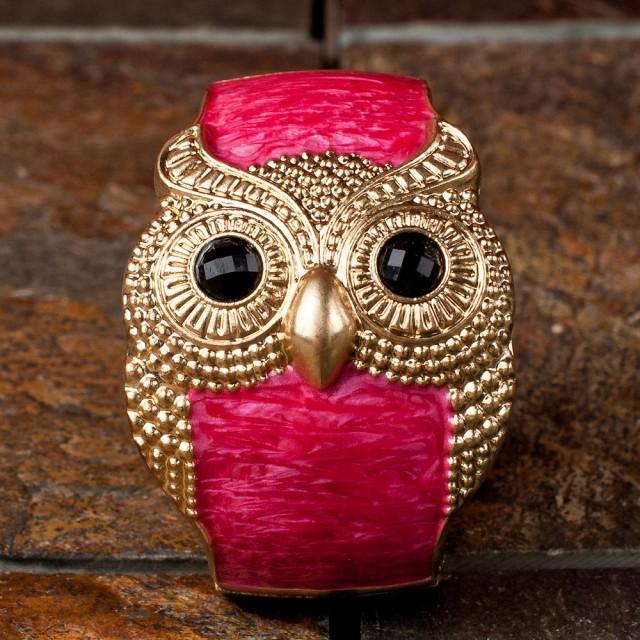 Beautiful Owl Braceletes (9)