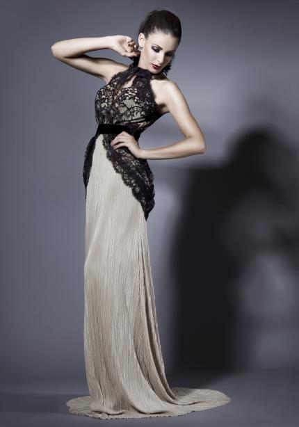 Elegant Dresses (13)
