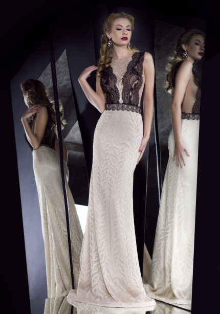 Elegant Dresses (17)