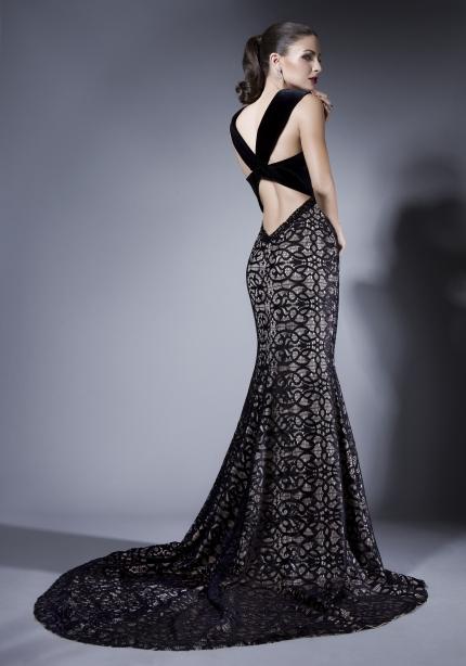 Elegant Dresses (2)