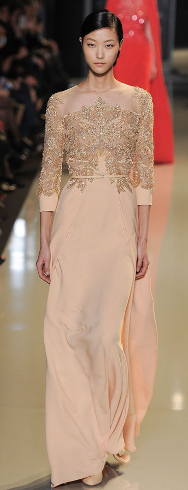 Elie Saab Couture Spring Summer 2013 (17)