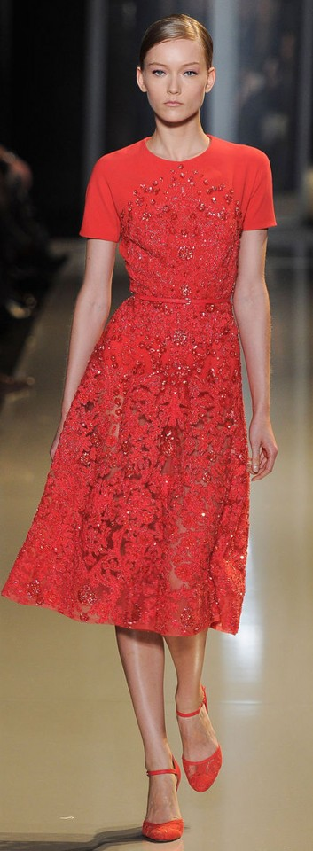 Elie Saab Couture Spring Summer 2013 (23)