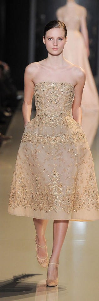 Elie Saab Couture Spring Summer 2013 (33)