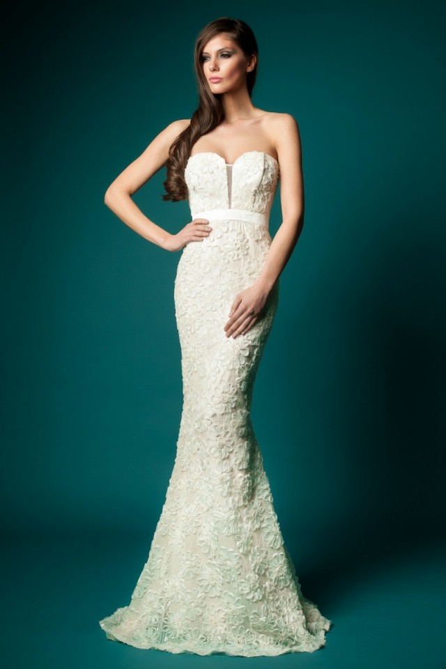 Beautiful dresses (4)