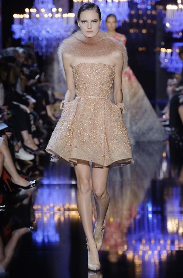 elie-saab-2014-fall-haute-couture-show25