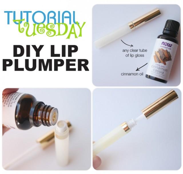 TT-DIYLipPlumper